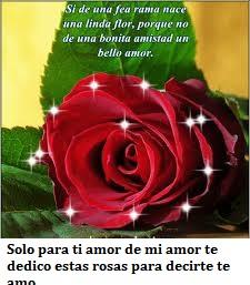Imágenes con rosas de amor para regalar