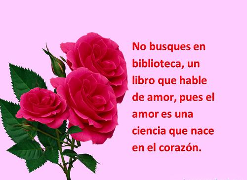 Imágenes con rosas de amor para twitter