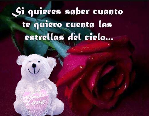 Frase romantica y bellas con rosas
